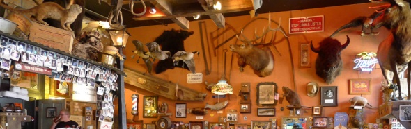 taxidermy in silverton