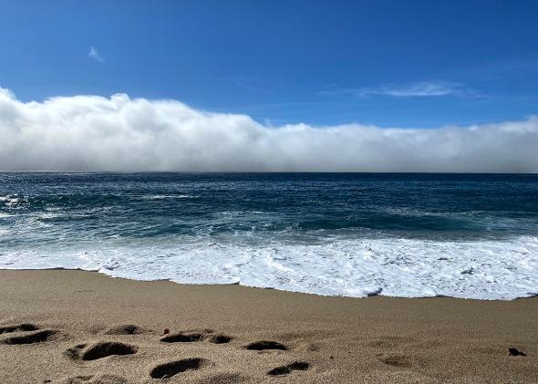 monastery beach carmel